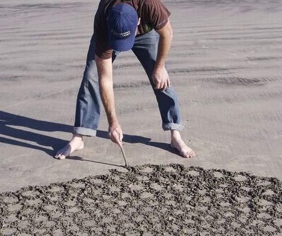 Андрес Амадор (Andres Amador) - рисунки на песке