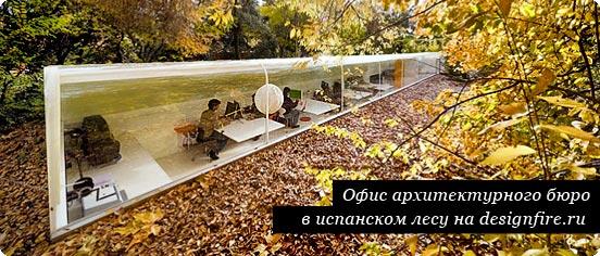 ofis_v_lesu