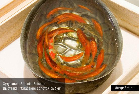 Художник Riusuke Fukahori. Выставка Goldfish Salvation (Спасение золотой рыбки)