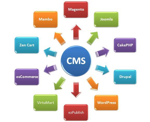 CMS не помешает сайту выйти в топ